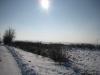 vidov-035
